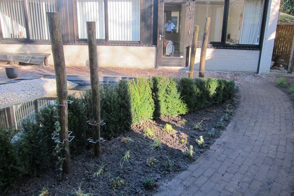 de rustgevende tuin tuinontwerp arleta